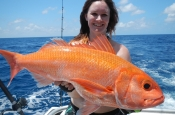 Bluewater Live Aboard fishing Charters