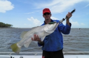 thumbs_1779812_667323009993167_436020109_n Darwin Barra Fishing Tour