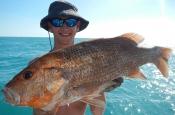 thumbs_10012788_642410652496951_1599789530_o Darwin Fishing Charters | Bluewater Reef Fishing