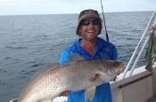 thumbs_1796611_636159703122046_1464214477_n Darwin Fishing Charters | Bluewater Reef Fishing